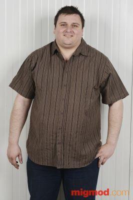 Мъжка риза с къс ръкав (макси)
